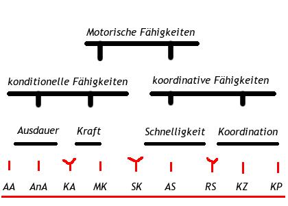 Motorikplan