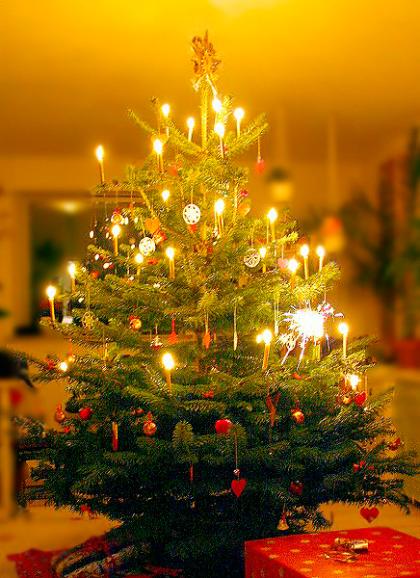 Weihnachtsbaum-Geschenk